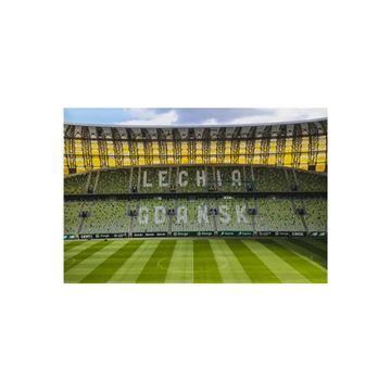 Obrazek Magnes Stadion